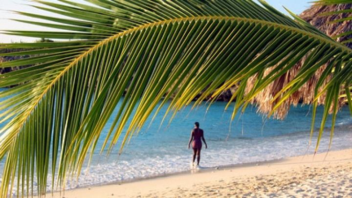Ein Mann in der Karibik unter einer Palme im Wasser