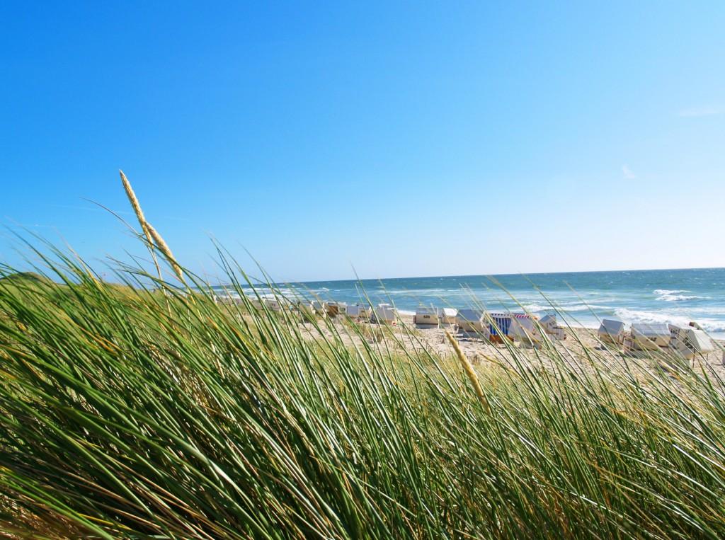 Ein wunderschöner Ostseestrand