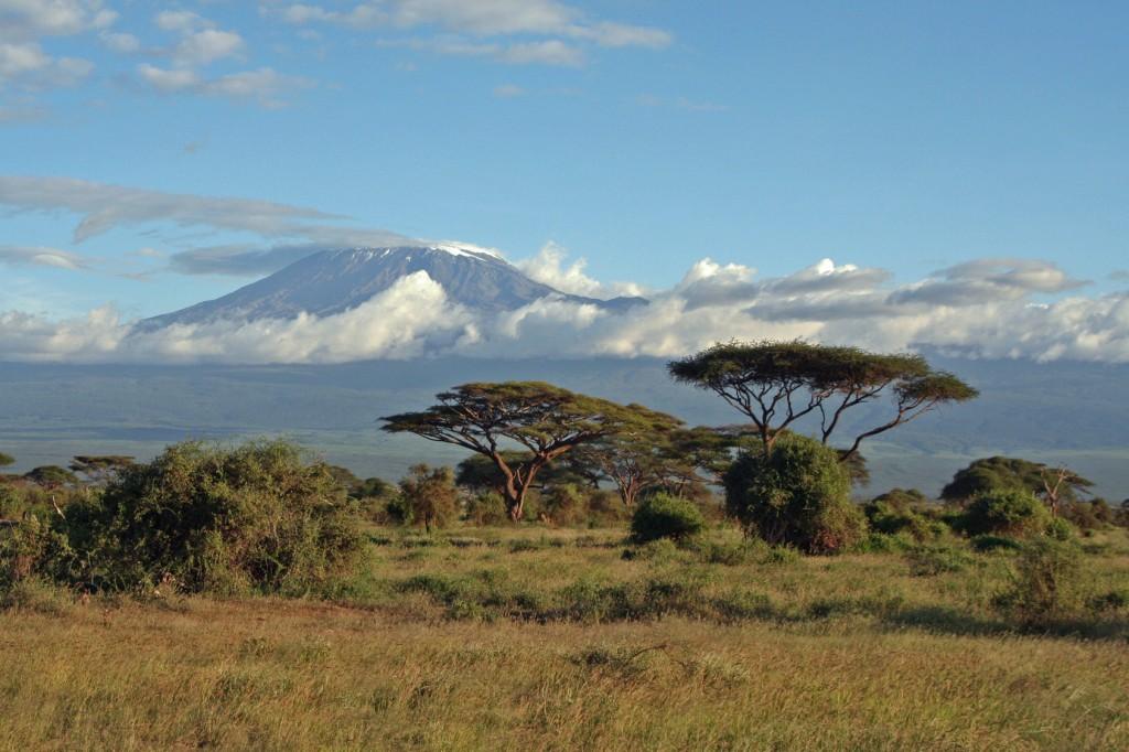 Der Artkel berichtet über das Erklimmen des Kilimanjaros.